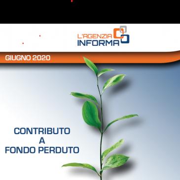 CONTRIBUTI A FONDO PERDUTO: Guida dell'Agenzia delle Entrate