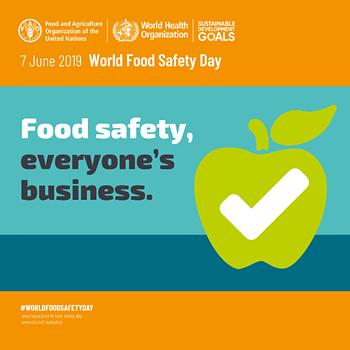 SICUREZZA ALIMENTARE : documento della Commissione Europea sul commercio alimentare e ristorazione